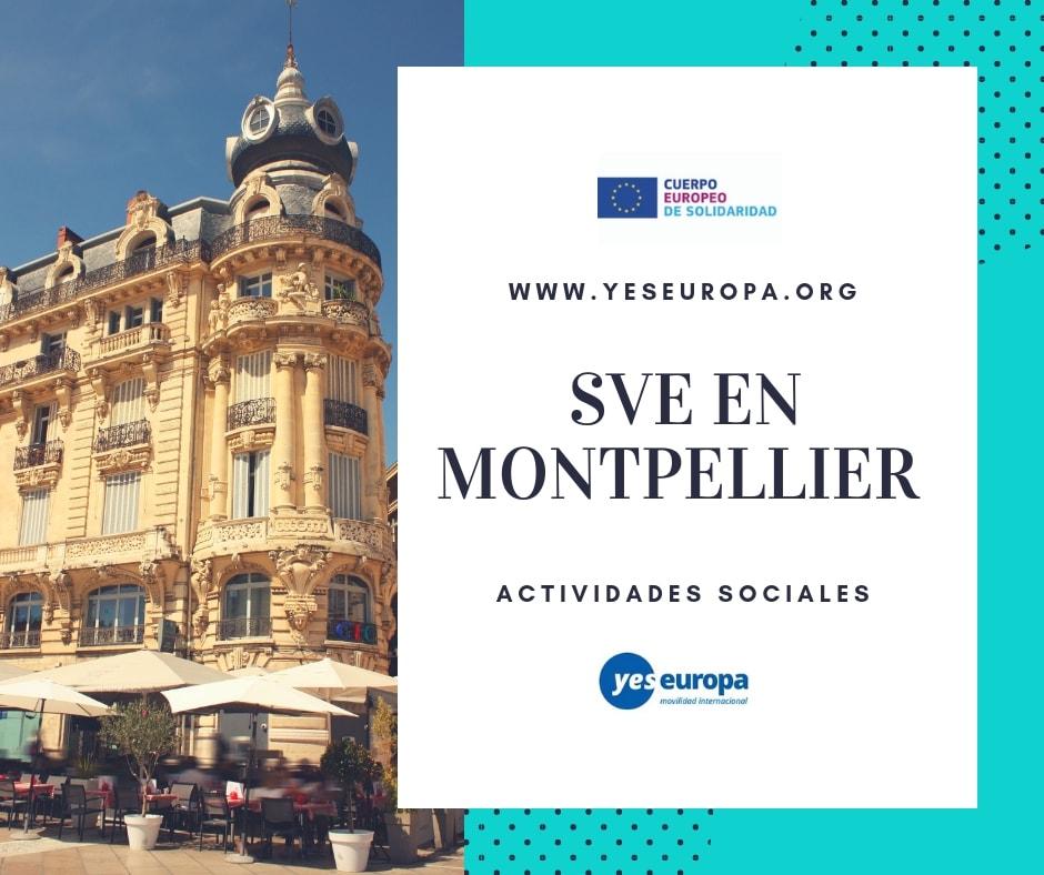 SVE en Montpellier