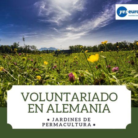 Ser Voluntario Alemania en jardines de permacultura