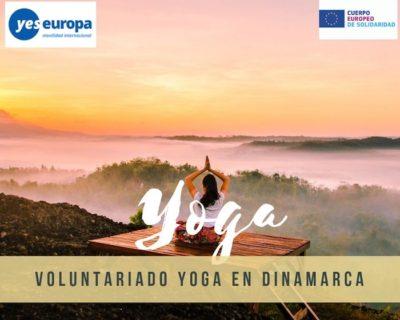 Voluntariado yoga y sostenibilidad en Dinamarca