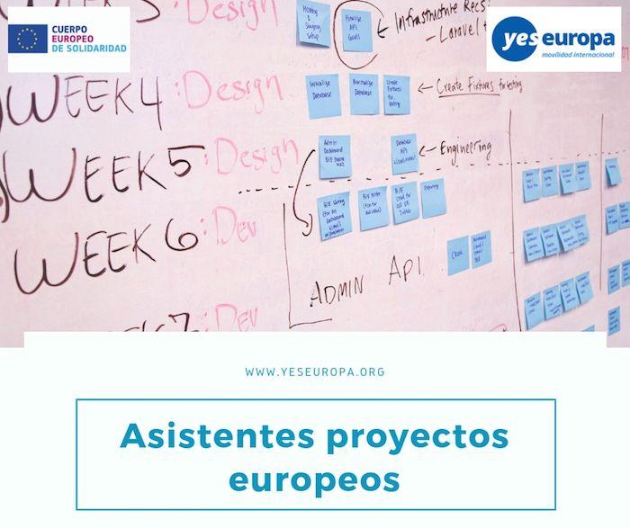 asistentes proyectos europeos