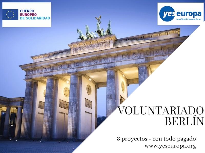 voluntariado berlín alemania