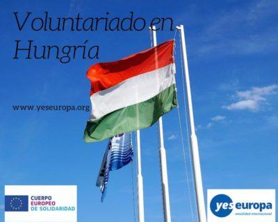 Voluntariado Hungría en comunidades desfavorecidas