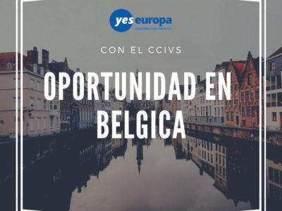 Oportunidad para Youthworkers en Bélgica