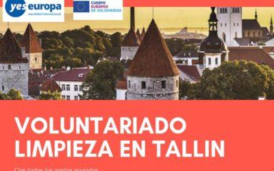 Marketing y Comunicación en Voluntariado limpieza residuos en Estonia (Tallin)