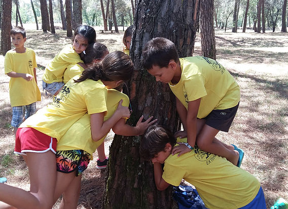 summer camp catalonia children