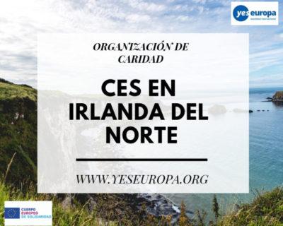 CES en Irlanda del Norte en una organización de caridad