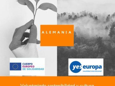 Voluntariado sostenibilidad y cultura en Alemania