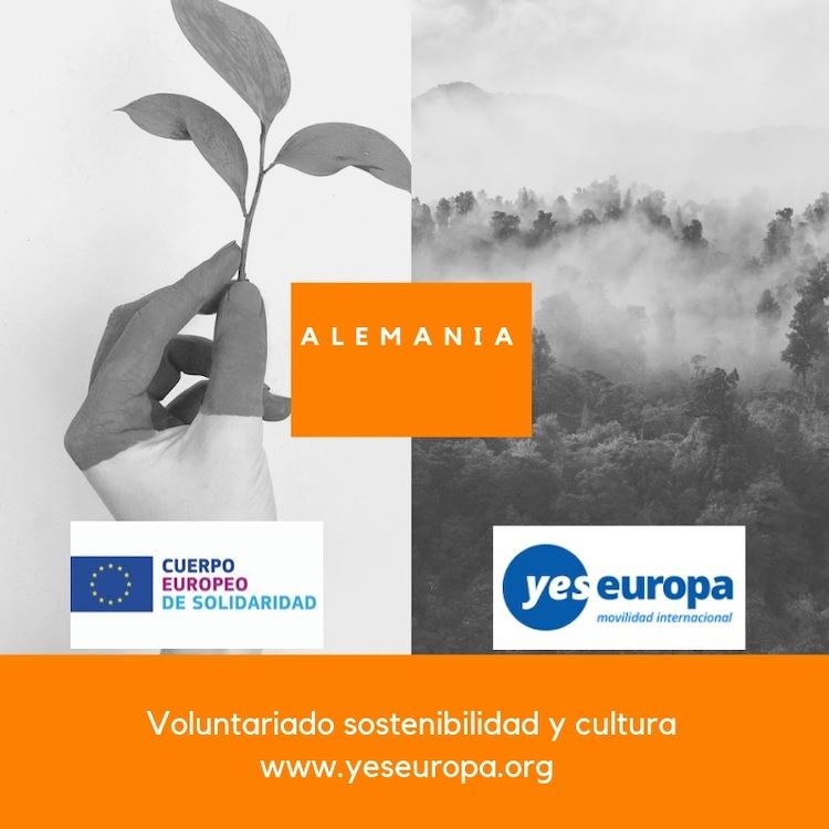 VOLUNTARIAdO ALEMANIA sostenibilidad