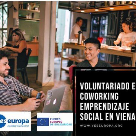 Voluntariado en coworking emprendizaje social en Viena