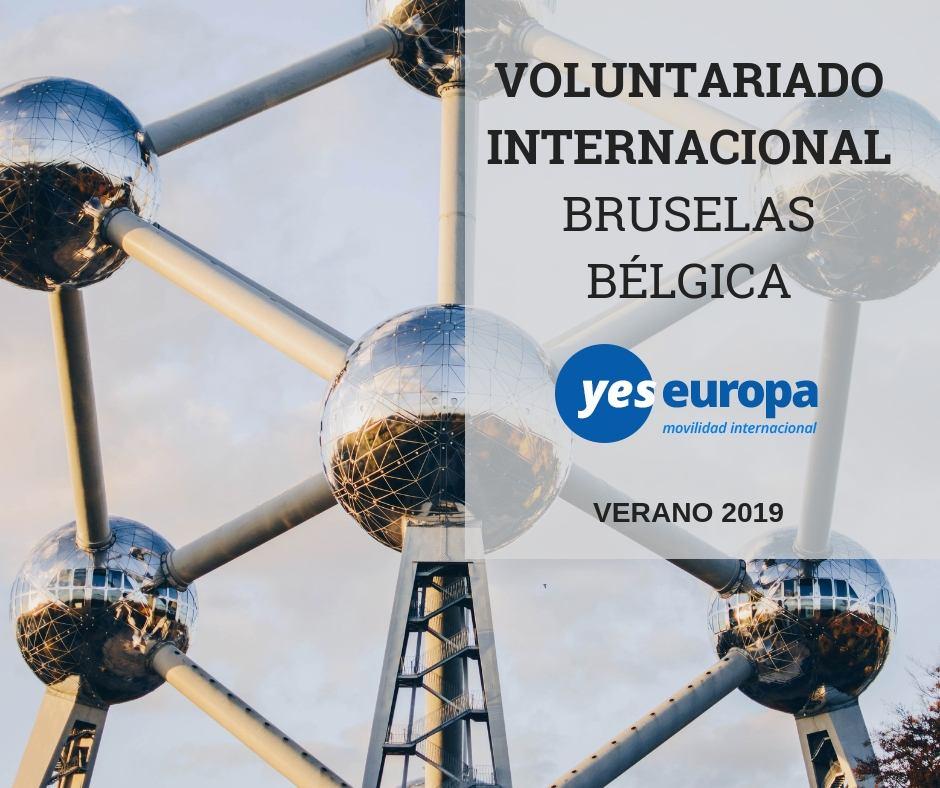Voluntariado internacional Bruselas