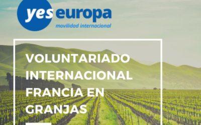 Voluntariado internacional en granjas en Francia