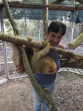 voluntariado peru animales