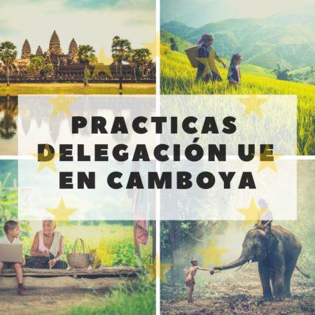 Delegación UE Camboya – Practicas