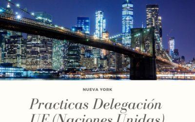 Prácticas Delegación UE de las Naciones Unidas (Nueva York)