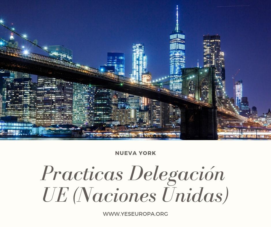Practicas Delegación UE
