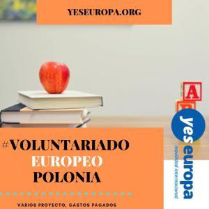 Voluntariado Polonia en escuelas – varios proyectos