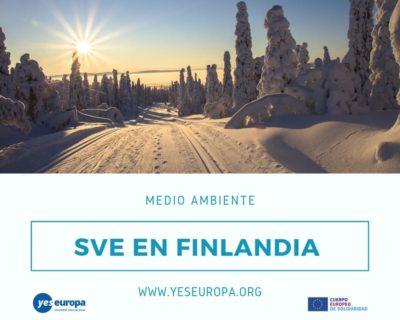 Voluntariado verano Finlandia en medio ambiente