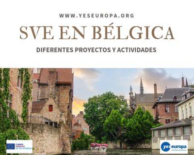 Ser Voluntario UE en Bélgica (1 año) en varias actividades