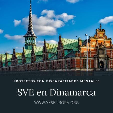 Hacer Voluntariado Dinamarca con discapacitados mentales