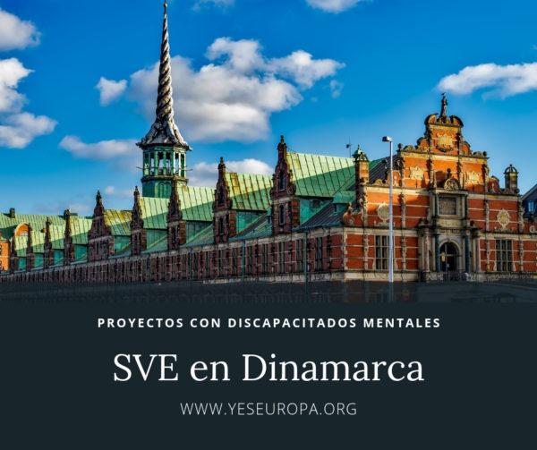 Hacer Voluntariado Dinamarca