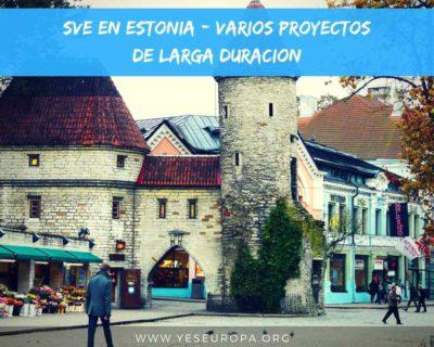SVE en Estonia varios proyectos de voluntariado