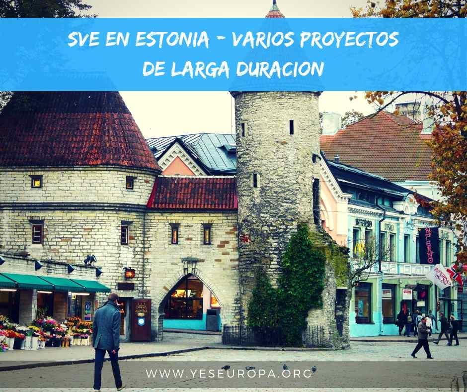 SVE en Estonia proyectos