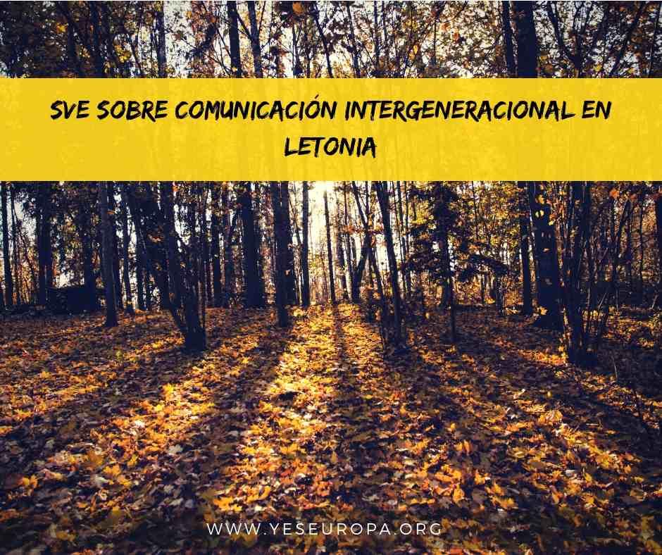 SVE sobre comunicación intergeneracion