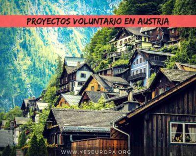 Voluntariado europeo en Austria – ocho proyectos