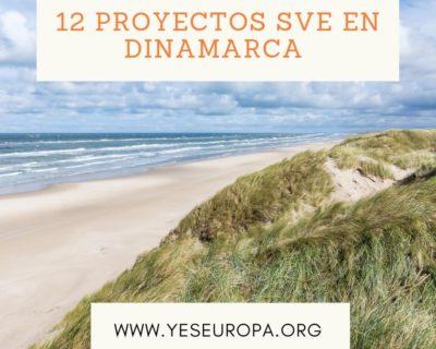 12 proyectos SVE en Dinamarca (varios ámbitos y fechas)