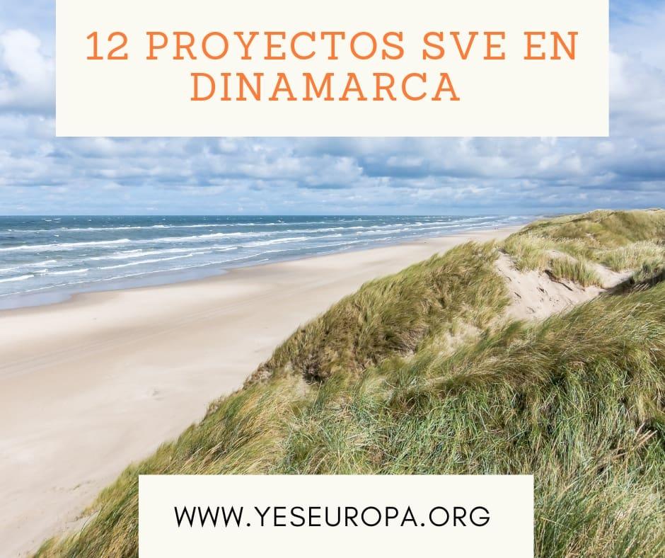 12 proyectos SVE en Dinamarca