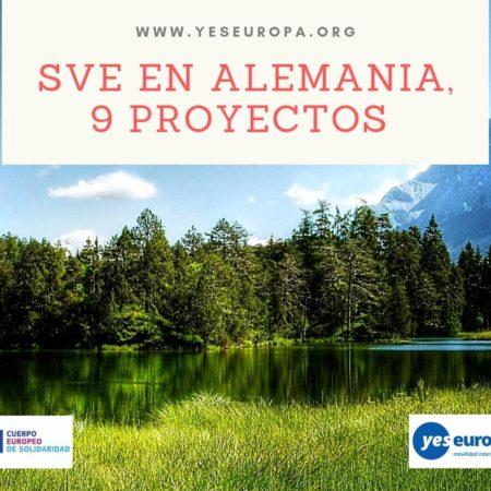 SVE en Alemania con varios proyectos disponibles