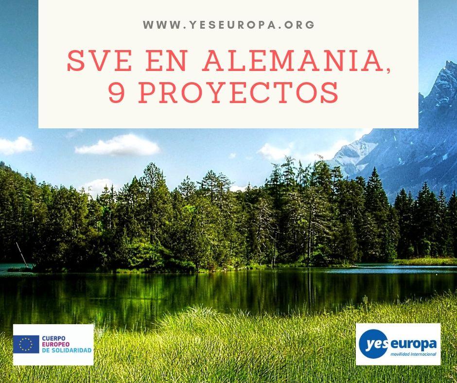 SVE EN ALEMANIA, 9 PROYECTOS