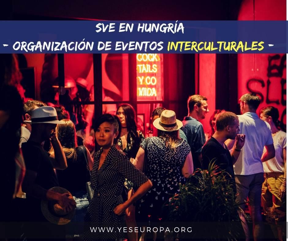 Voluntariado sobre organización de eventos