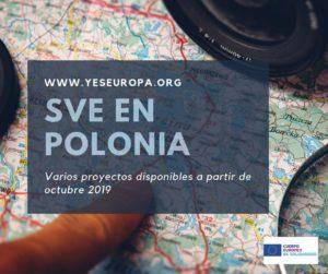 Ser voluntario Schuman en Polonia