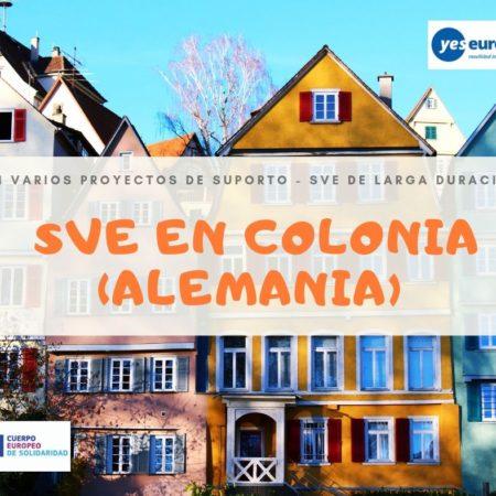 SVE en Colonia (Alemania) en varios proyectos de suporto
