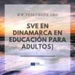 Ser Voluntario en Dinamarca (educación para adultos)