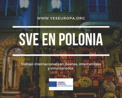 Ser Voluntario en Polonia en intercambios internacionales