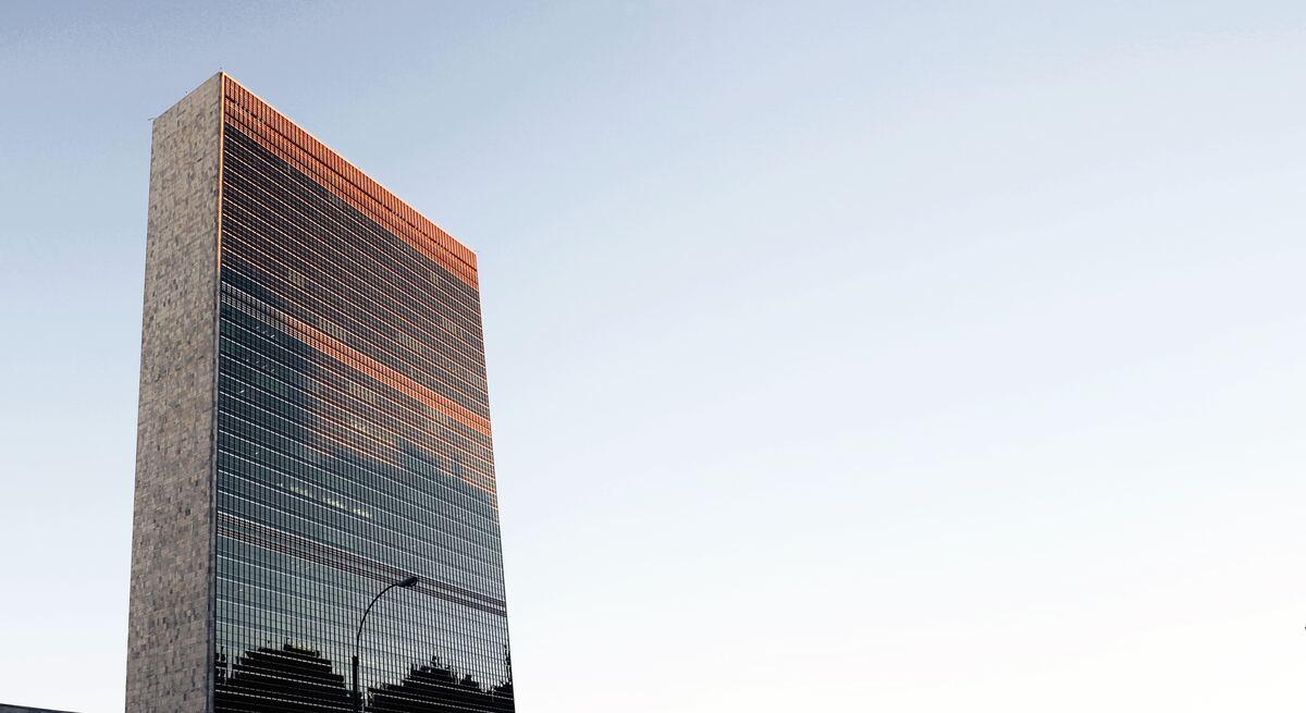 voluntariado con las Naciones Unidas