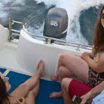 voluntariado verano croacia con delfines