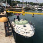 voluntariado verano delfines croacia