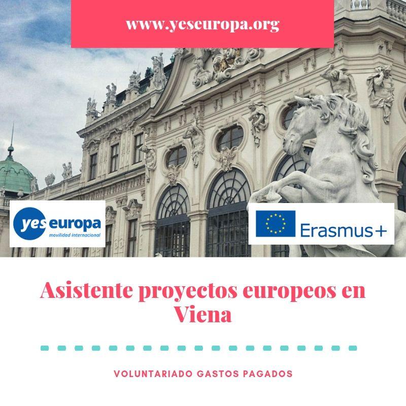 asistente proyectos europeos
