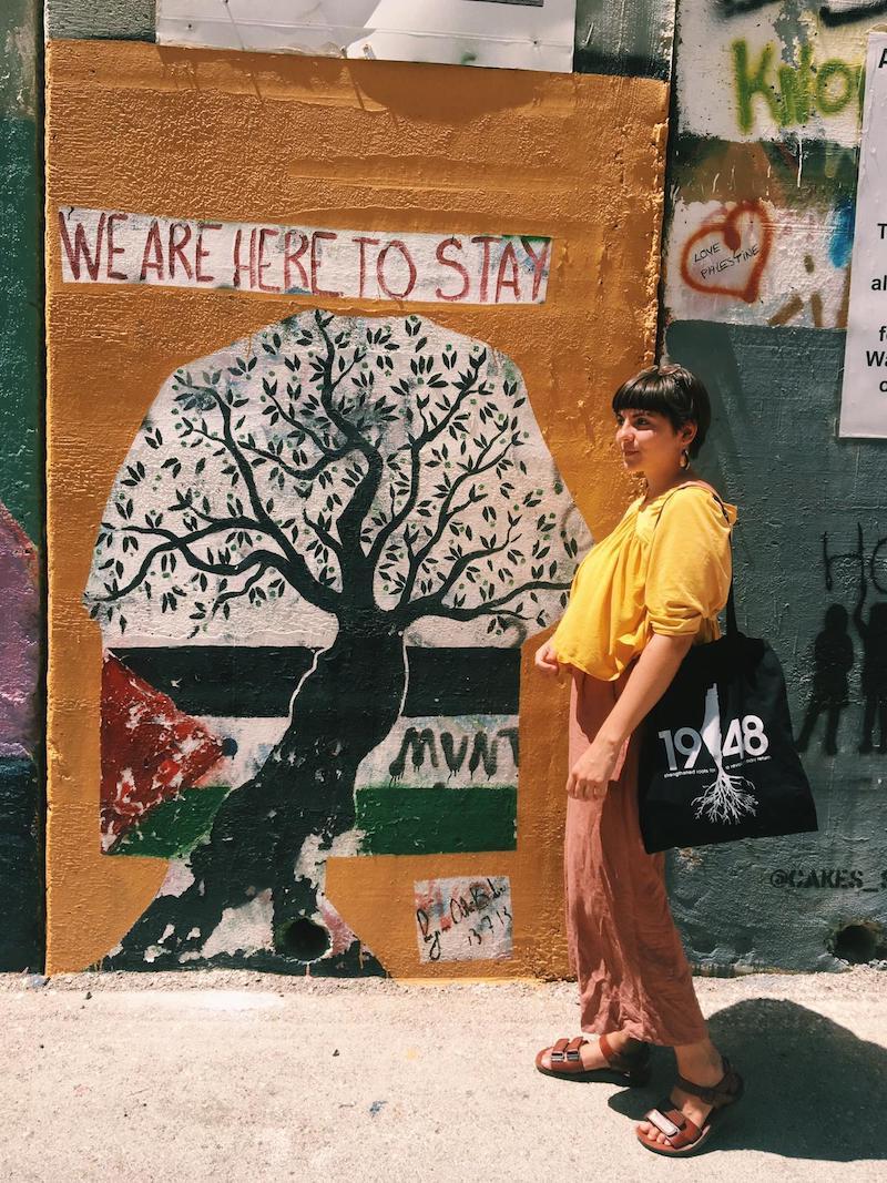 voluntariado palestina hebron