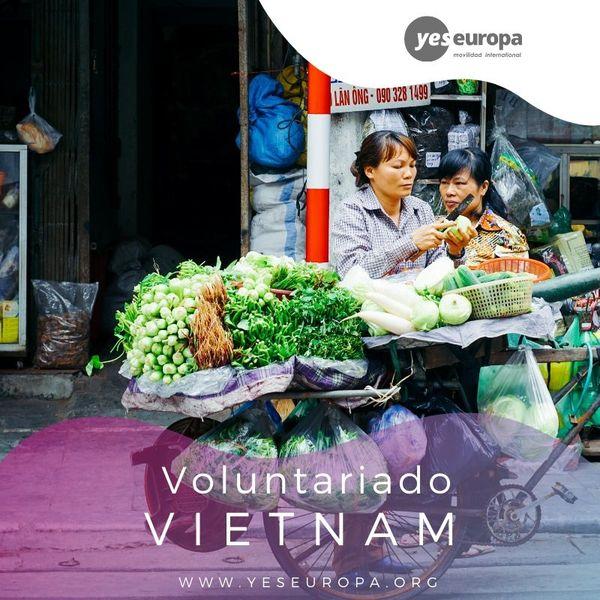 SVI en Vietnam