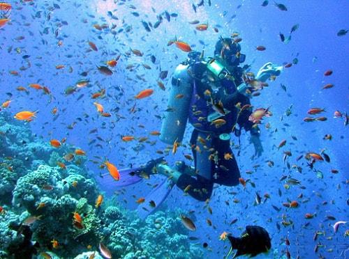 cursos ingles en malta submarinismo