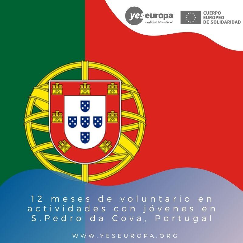 Redes voluntariado S.Pedro da Cova, Portugal
