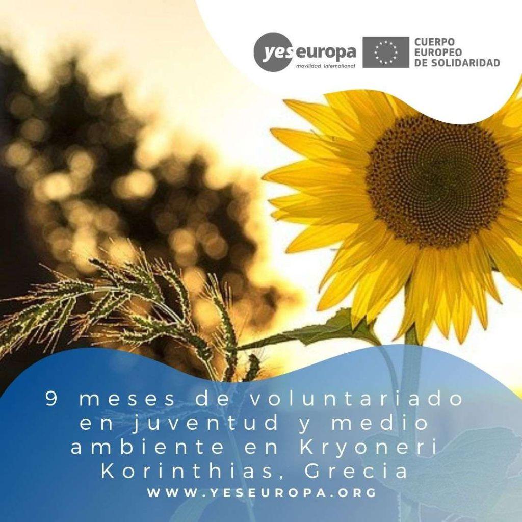 Redes voluntariado Kryoneri Korinthias, Grecia